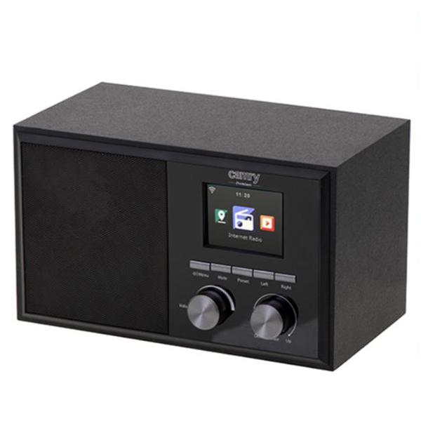 Internet radio Camry CR1180